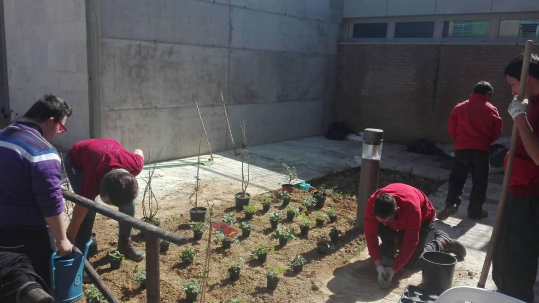 Prende forma l'orto alla RSA Villa Chigi realizzato dai nonni in collaborazione con i ragazzi dell'Associazione Allianz di San Felice